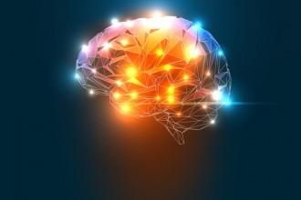 Neurosciences et QVT