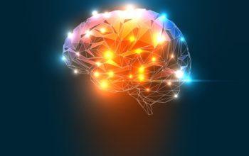 Quand la neuroscience se mêle de la QVT