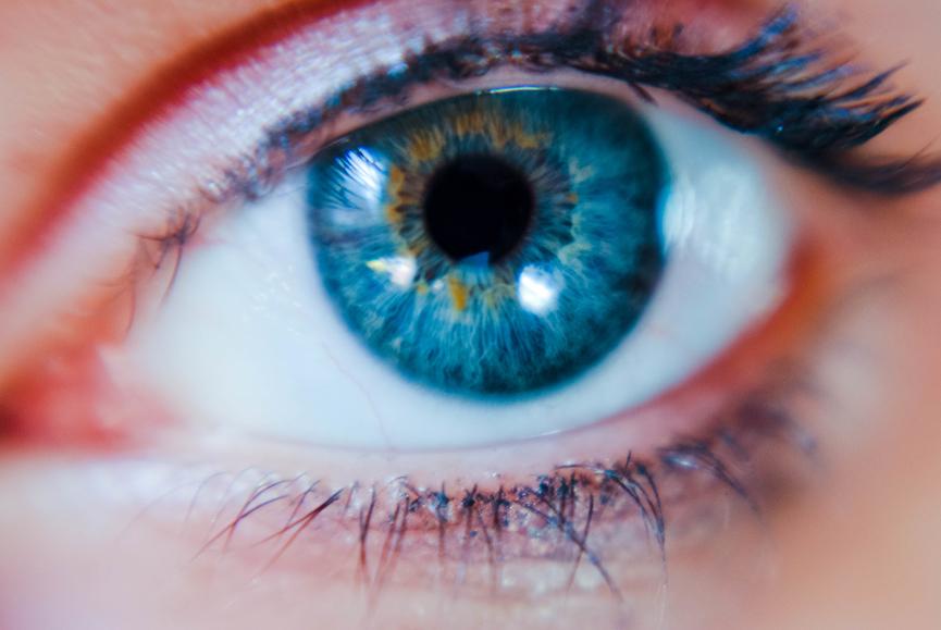 Qu'est-ce que le management sensoriel?